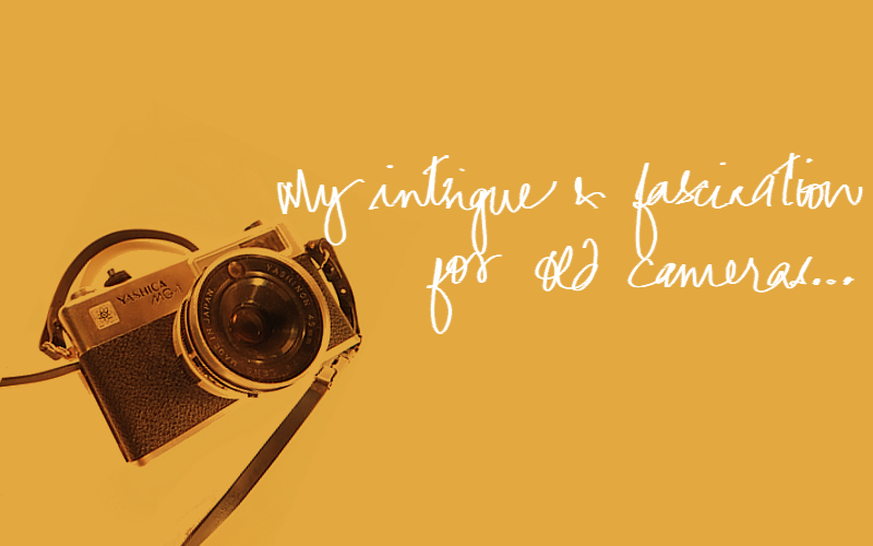 my love for old cameras